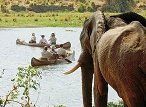 Lower Zambezi National Park Accommodation