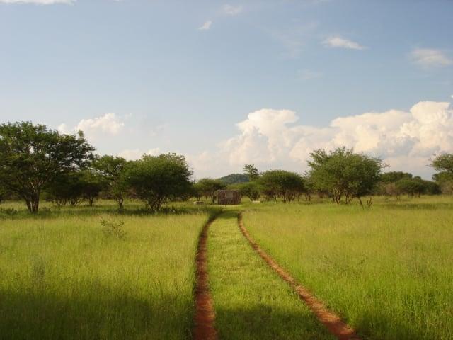 Eastern Botswana Model.PageTitle