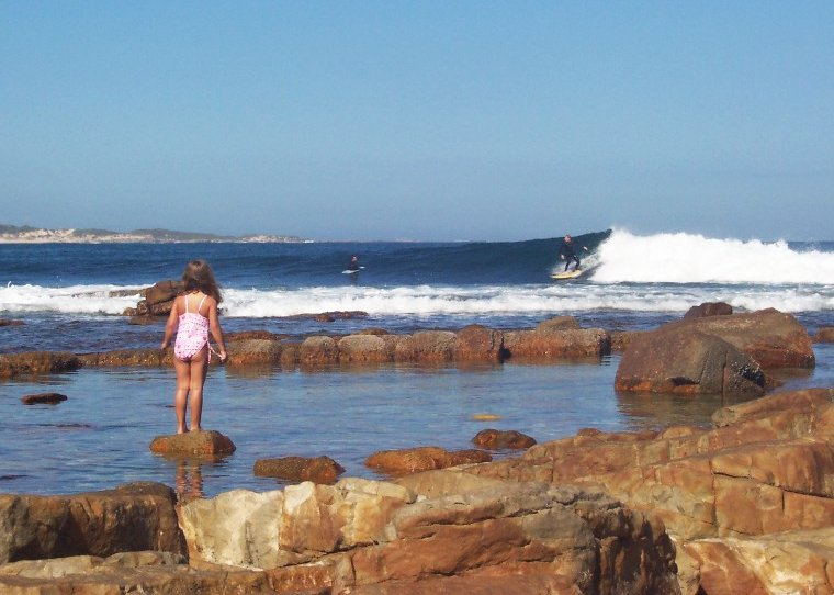 Cape St Francis surfing