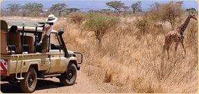 Meru National Park Accommodation