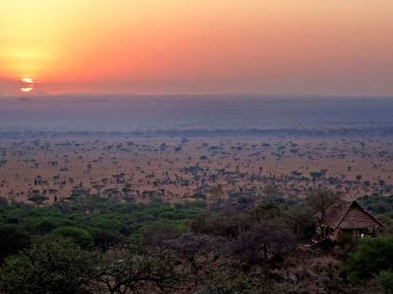 Serengeti National Park Model.PageTitle