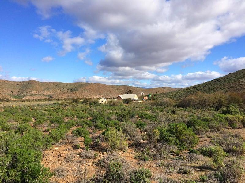 Ladismith landscape