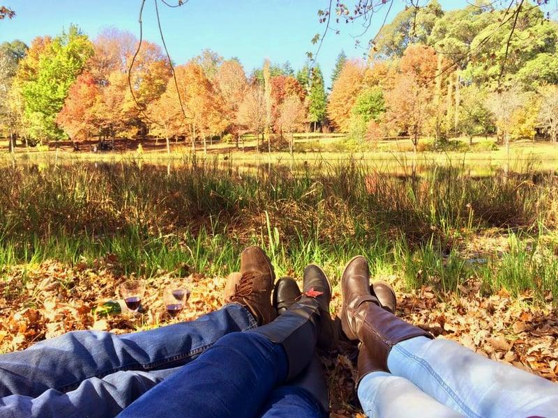 Autumn in Underberg
