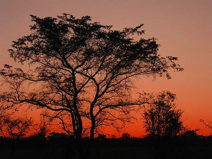 Bushveld sunset, Vaalwater