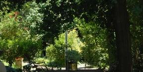 Westdene (Bloemfontein) Accommodation