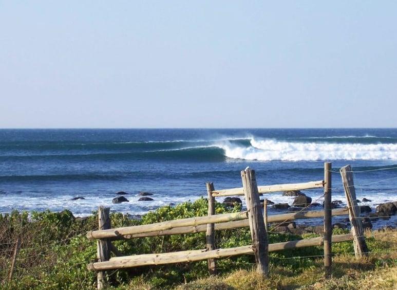 Haga Haga waves
