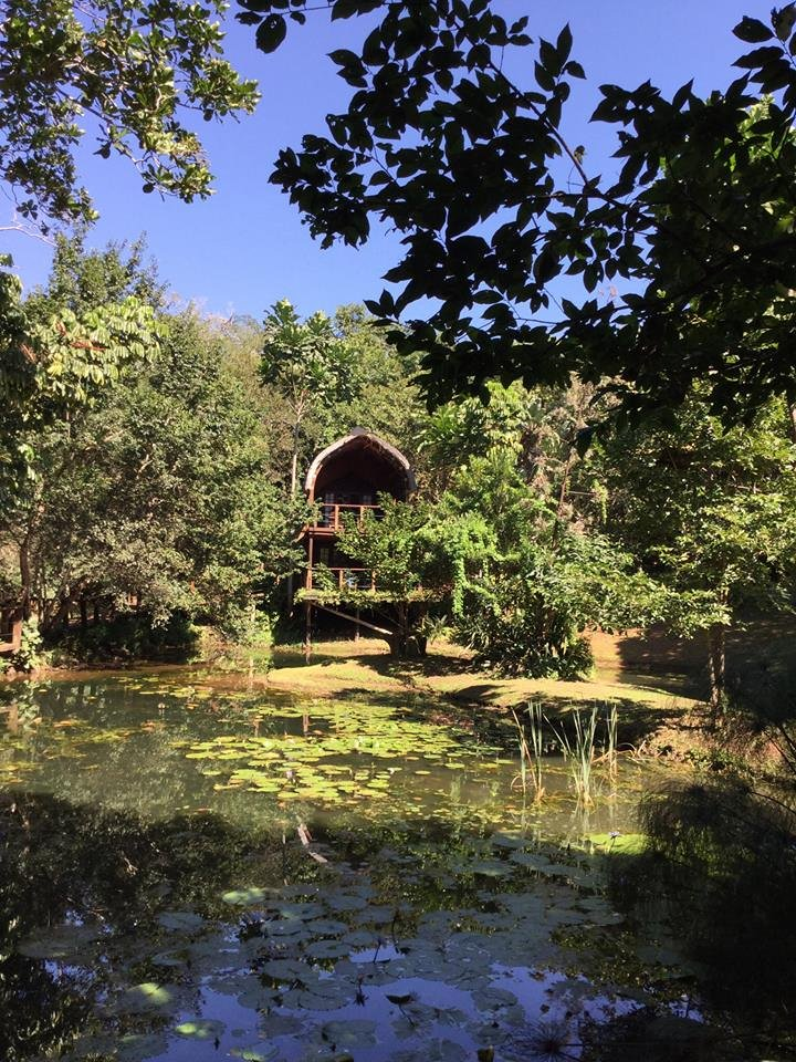 Serenity Forest Eco Reserve near Malelane