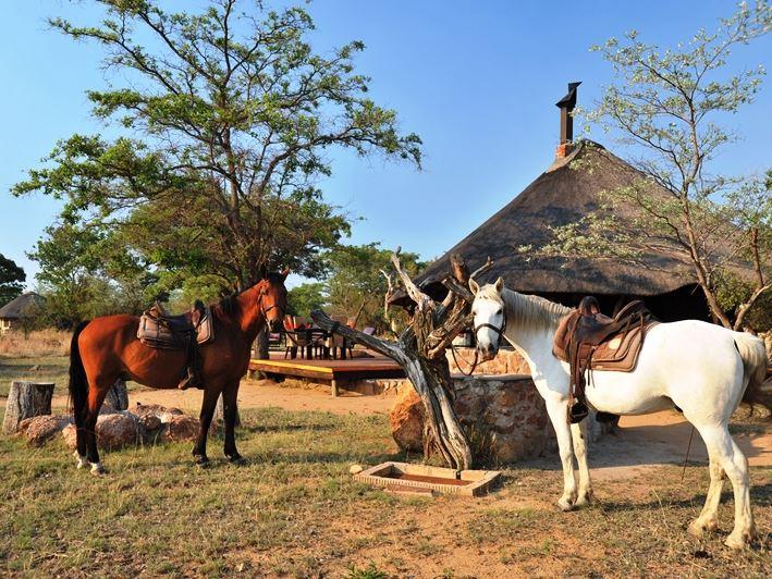 Kwafubesi Tented Safari Camp, Mabula Private Game Reserve
