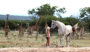 Waterberg Biosphere Reserve Accommodation