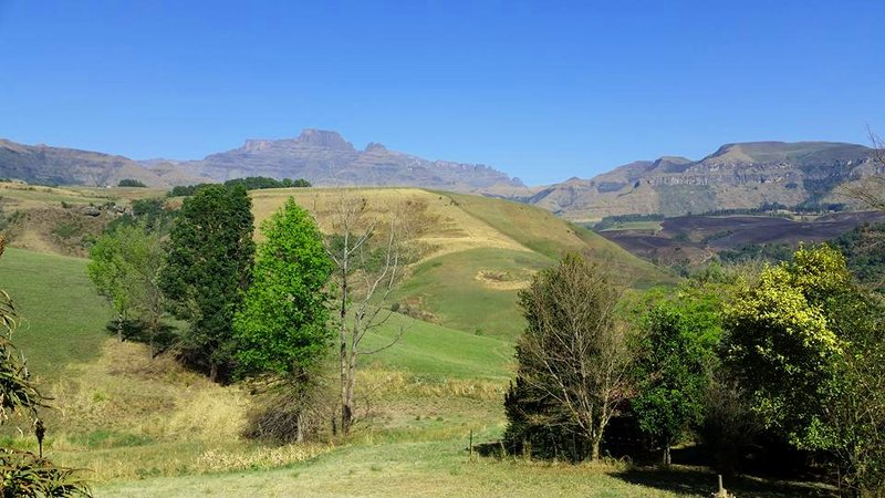 View of the Drakensberg from Champagne Valley
