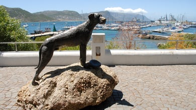 Things to do in Simons Town
