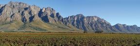The Picturesque Slanghoek Wine Valley