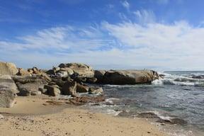 Saunders Beach